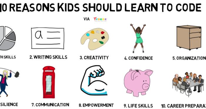 Программирование, с чего начать и как выбрать подходящие программы для обучения.